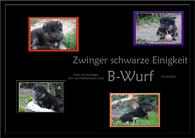 B-Wurf schwarze Einigkeit (2)