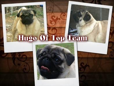 Hugo of Top Team