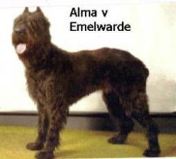 Alma van Emelwarde
