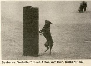 Anton vom Hein