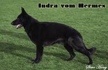 Indra vom Hermes