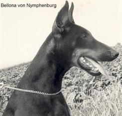 Bellona von Nymphenburg