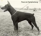 Feus von Nymphenburg