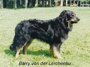Barry von der Lerchenau