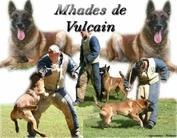 M'Hadès de Vulcain