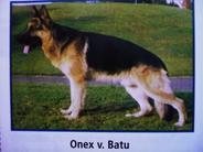 Onex von Batu