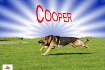 Cooper de la Coquellerie