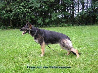 Fiona von der Reiterkaserne
