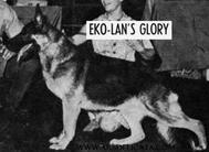 Eko-Lan's Glory