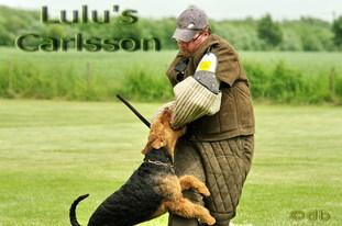 Lulu's Carlsson