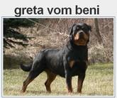 Greta vom Beni