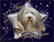 Argyle's Glory Amazing Grace