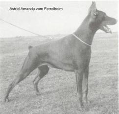 Astrid Amanda van Ferrolheim
