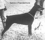 Sabine vom Franckenhorst