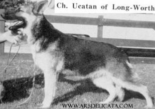 Ucatan of Long Worth