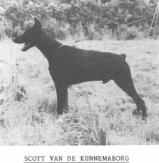 Scott van de Kunnemaborgh