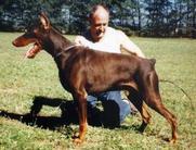 Angelo von Karat