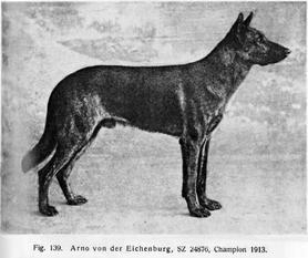 Arno von der Eichenburg