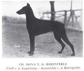 Mona von der Rheinperle