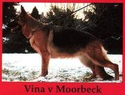 Vina vom Moorbeck