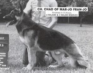 Chad of Mar-Jo Fran-Jo