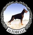 Playboy Altobello