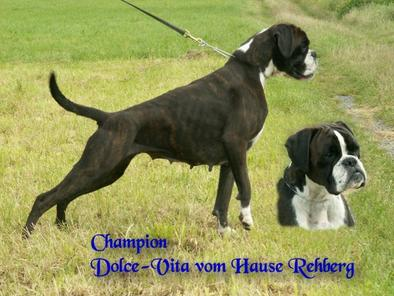 Dolce-Vita vom Hause Rehberg