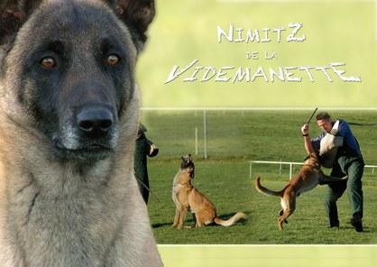 Nimitz de la Videmanette