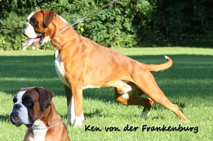 Ken von der Frankenburg