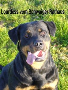 Lourdess vom Schwaiger Rathaus