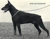 Eick vom Eschenhof