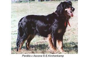 Perdita von Ascona