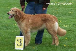 Winnie von Ascona