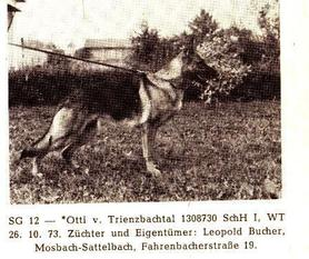 Otti vom Trienzbachtal