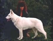 Aliena von White Princess