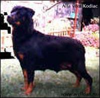 Alfa vom Kodiak