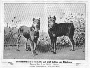 Gerhilde von Thüringen