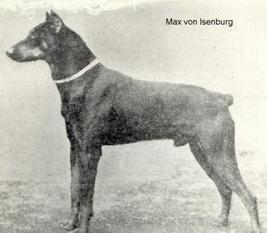 Max von Isenburg