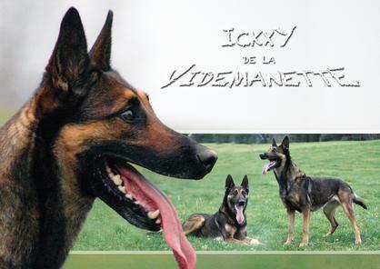 Ickxy de la Videmanette