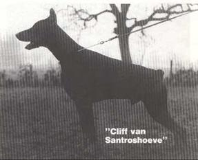 Cliff van Santroshoeve