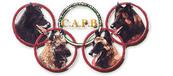 CAPB BSD Italian Championship Mondioring