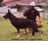 Kimba von der Sägmühle
