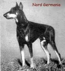 Nord Germania