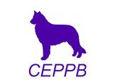 Campeonato Nacional de RCI del CEPPB