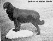 Esther von der Kieler Förde
