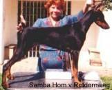 Samba Hom vom Rotdornweg