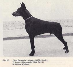 Titus Germania