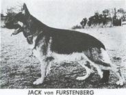 Jack vom Fürstenberg