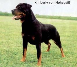 Kimberly von Hohegeiss