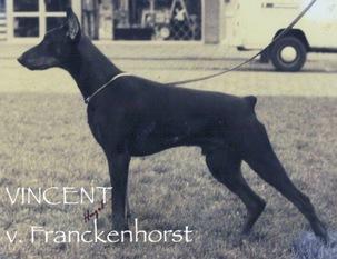 Vincent vom Franckenhorst
